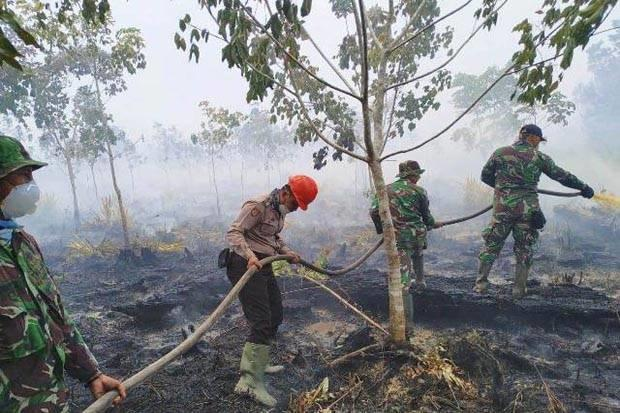 21 Orang Jadi Tersangka Karhutla di Kalimantan Barat