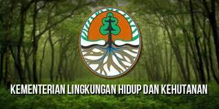 Moratorium Izin Hutan Alam Primer dan Gambut Efektif Kurangi Deforestasi