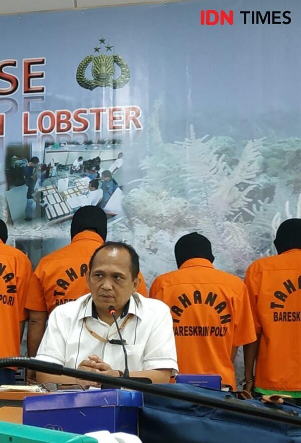 Polri Tangkap 10 Orang Penjual Benih Lobster Ilegal
