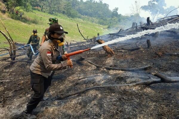 Gunung Batukaru Bali Kebakaran, Tak Ada Korban Jiwa