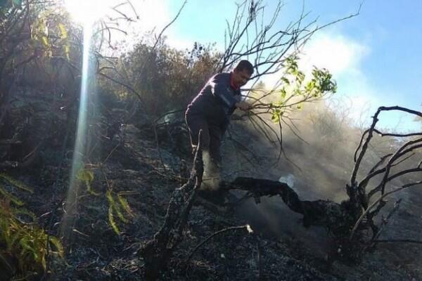 Setelah Gunung Sumbing, Titik Api Kini Muncul diGunung Batukaru Bali