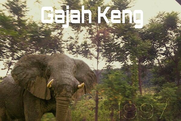 Pramuka : Gajah Keng