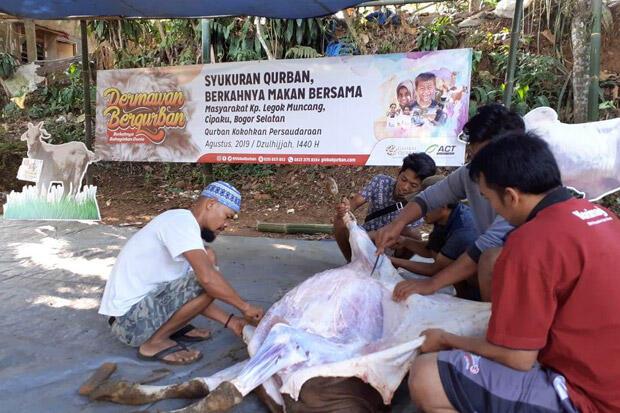 Syukuran Kurban, ACT Bogor Bagikan 300 Kantong Daging Sapi