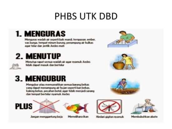 Dinas Kesehatan Kota Pekanbaru Waspadai DBD