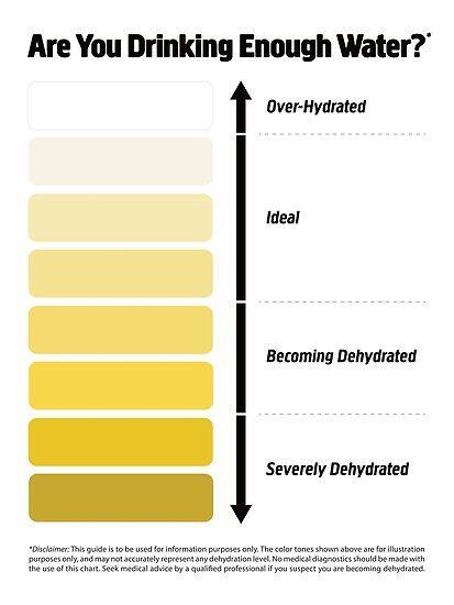 Terlalu Banyak Air Putih Ternyata Berbahaya! Perhatikan 8 Tanda ini Sebelum Terlambat
