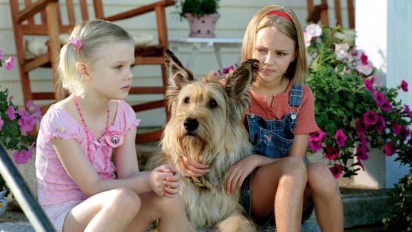 5 Film Bertema Persahabatan Manusia dan Anjing yang Mengharukan