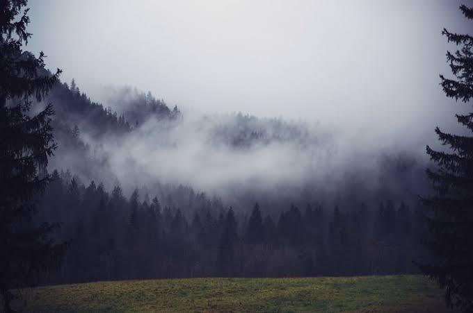 Cinta Di Balik Kabut
