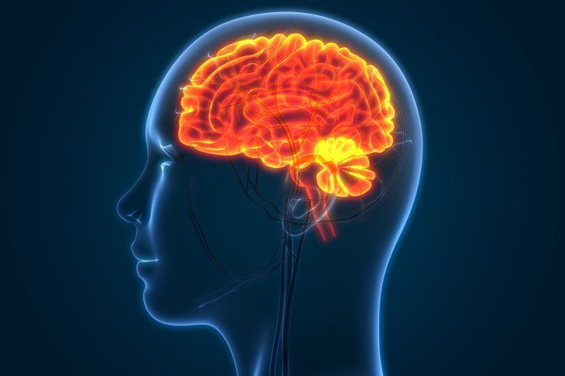 4 Dampak Mengerikan Stress Bagi Otak Kita