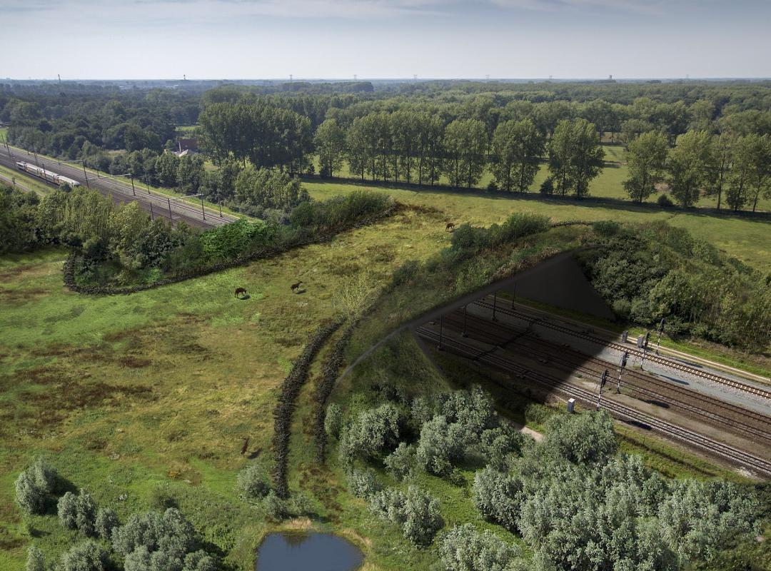 Anjay! Jembatan Penyeberangan Untuk Singa? Di Negara Ini Ada Loh!
