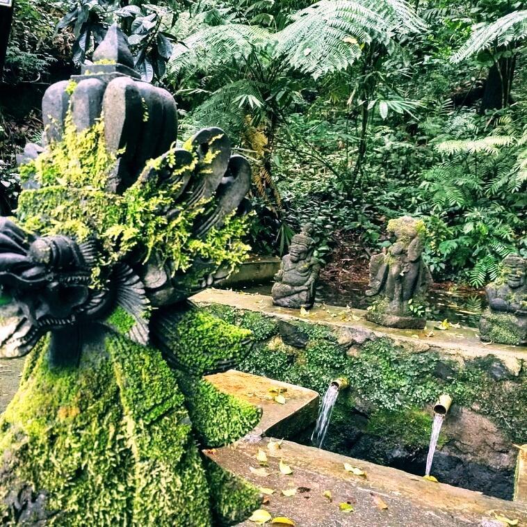 Tempat Wisata Viral yang ada di Banyuwangi, penasaran ?