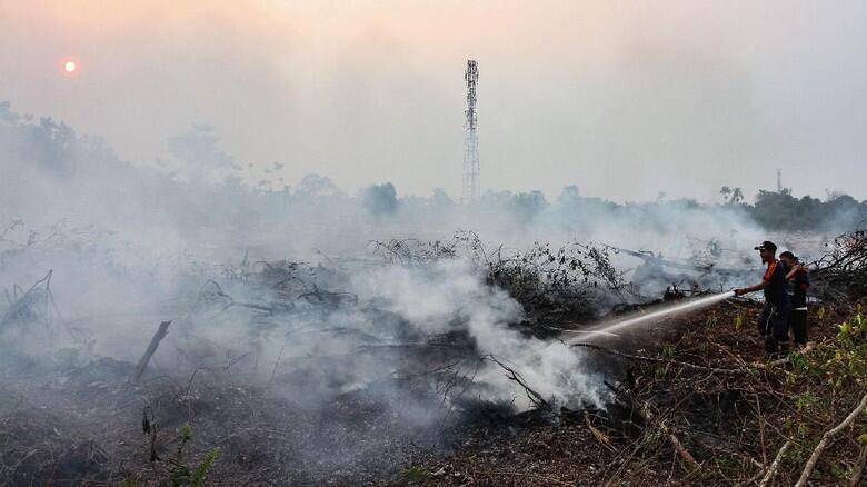 MUI Riau: Pelaku Karhutla Orang Tak Taat Beragama