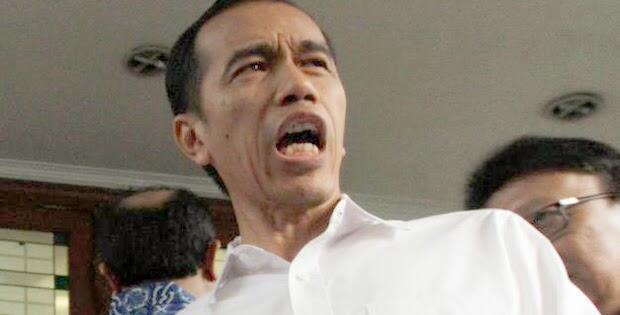 Jokowi Sebut Tak Ada Warga Indonesia Terjangkit Virus Corona