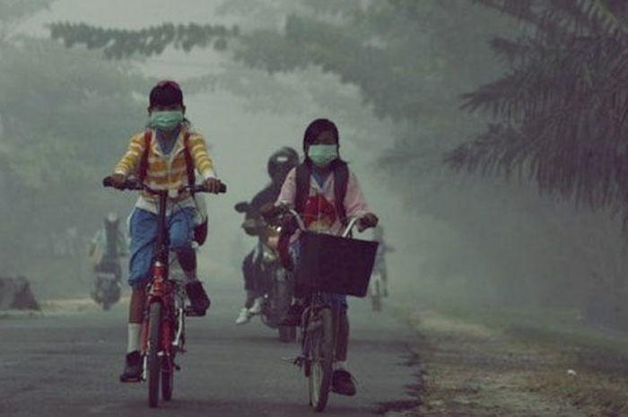 Fakta Ular Raksasa Korban Kebakaran Hutan Kalimantan