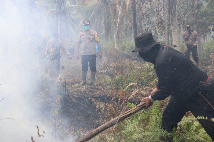 KLHK Segel Perusahaan Sawit Malaysia Pembakar Lahan di Riau
