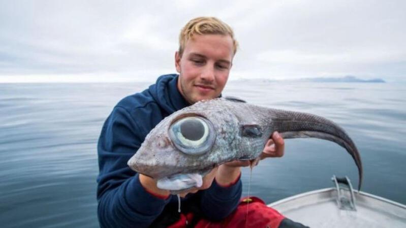 "Inilah Penampakan Ikan ""MONSTER MATA RAKSASA"", Yang Tertangkap Pemancing!"