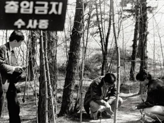 Hwaseong Kasus Pembunuhan Berantai Terburuk di Korea Selatan