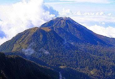 Semut Salimbada, Tragedi Malam di Gunung Wilerang