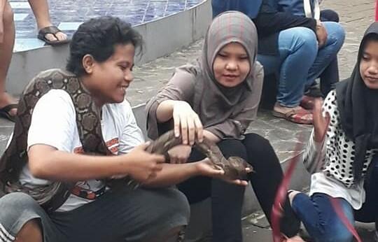 5 Hal Nyeleneh Yang Cuma Ada Di Komunitas Reptil