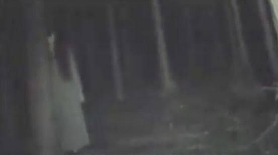 Suara Mesterius Saat Mendaki Di Gungung Ungaran (Via Camp. Mawar)