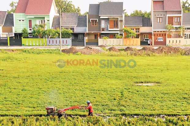 Cegah Alih Fungsi, Pemerintah Beri Insentif ke Pemilik Lahan Pertanian Pangan