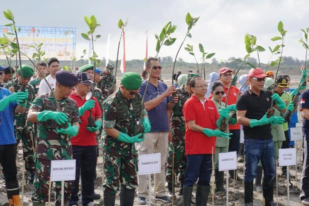 Pelindo III-TNI Sinergi Tanam Ratusan Ribu Bibit Bakau