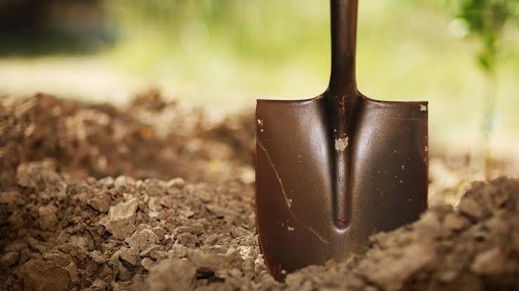 Digging the Assets – Estimating Real Value Pt. 1