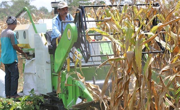 Gerakan Mekanisasi dan Pertanian Organik di Morowali, Sulteng