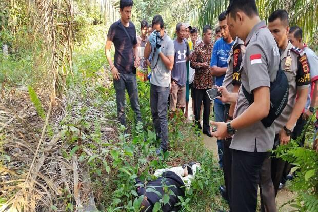 Heboh, Mayat Tukang Ojek Ditemukan di Kebun Sawit