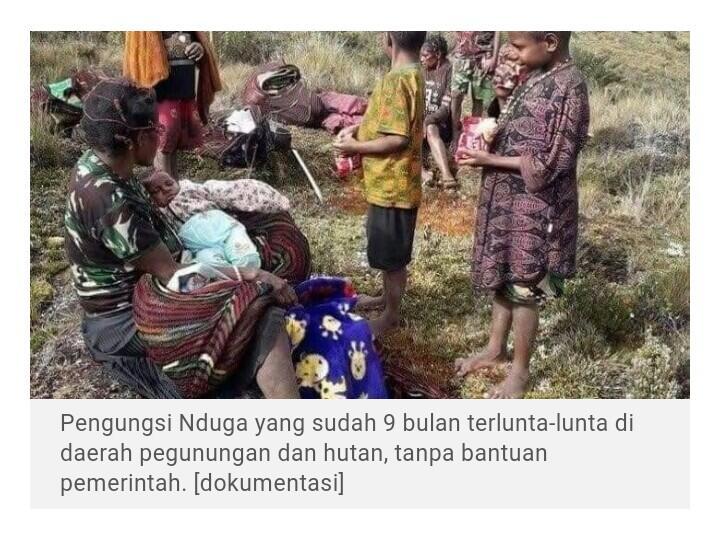 9 Bulan Mengungsi Tanpa Bantuan, 184 Warga Nduga Tewas, 41 antaranya Bocah