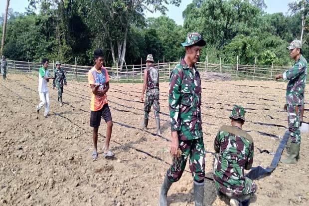 TNI dan SAD Gotong Royong Pasang Selang Air untuk Aliri Tanaman
