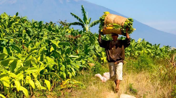 Semoga PKH, Dana Desa Dan Nanti Kartu Pra-Kerja Lebih Tepat Sasaran Ke Masyarakat