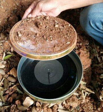 Viral Penemuan Piringan Hitam Dikubur Dalam Tanah, Siapa Penyanyi Lagu Misterius Itu?