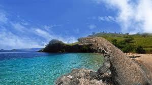 Gempar! Pulau Komodo Akan Ditutup!