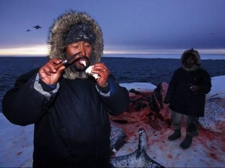 5 Makanan Orang Eskimo yang Unik dan Tak Biasa