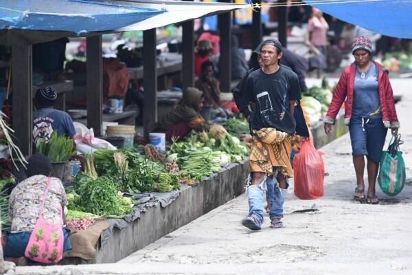 DPD Bentuk Pansus untuk Selesaikan Permasalahan di Papua