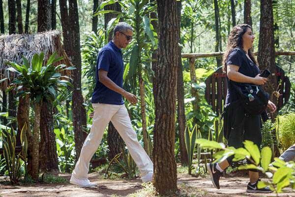 Hutan Pinus dan Rumah Hobbit, Wisata Murah Meriah! Benarkah Obama Pernah Ke Sini?