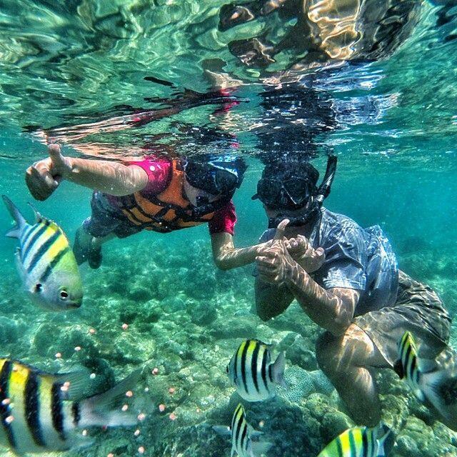 Nggak Kalah Dengan Bali & Lombok, Ini Dia 4 Spot Snorkeling Keren di Jogja