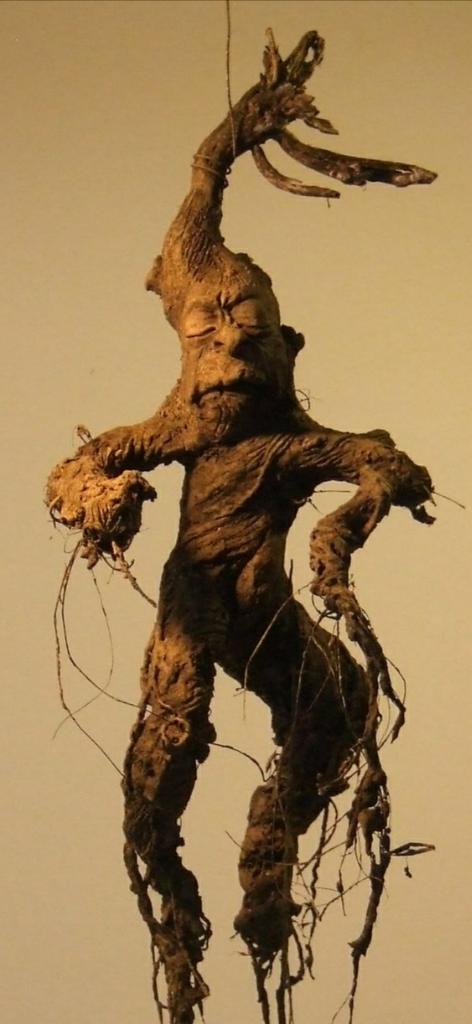 Mandrake! Tanaman yang Menyerupai Manusia, Tumbuh Dengan Tetesan Darah dan Sperma