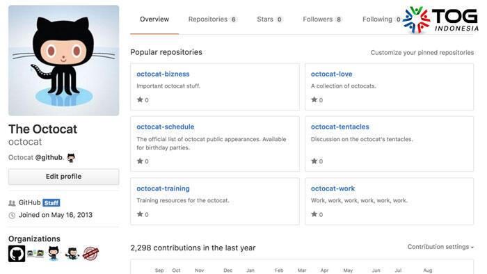 Pentingnya Profile Github Untuk Para Programmer