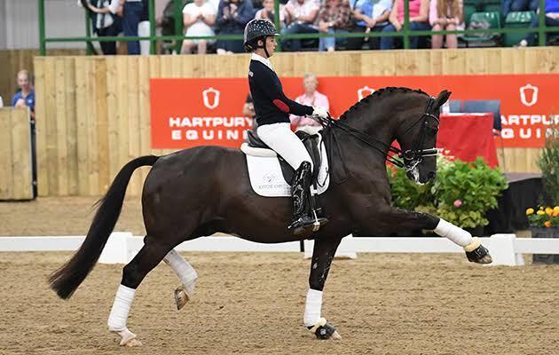 5 Jenis Olahraga Seru yang Wajib Menggunakan Kuda, Apa Saja Gansis?