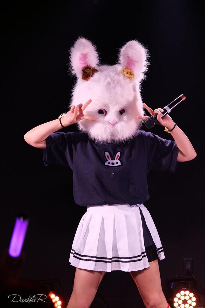 Teror Pria Berkostum Kelinci, Bunny Man