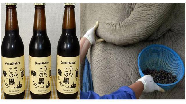 4 Minuman Ini Dari Berasal Dari Kotoran hewan Namun Mahal