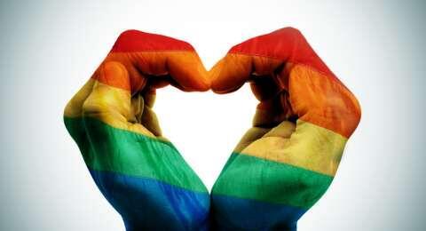 Gay dan Lesbian di Depok Akan Dirazia, Komnas HAM: Melanggar HAM