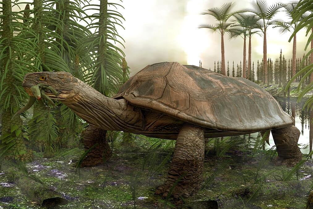 Dilanjutkannya Baton Estafet Kehidupan oleh Para Mamalia - Part 10: Paleogen