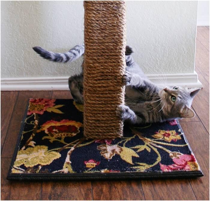 Mudah Dibuat, Manjakan Kucing Agan dengan 6 Mainan ini Gan!