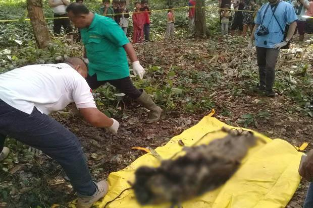 Mayat Tanpa Identitas Ditemukan di TPU Kampung Singapadu Serang