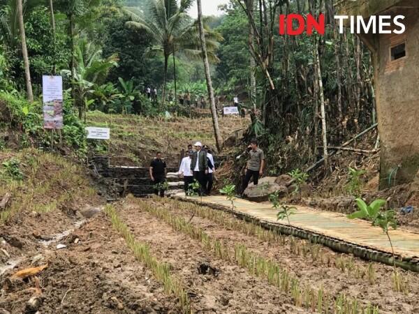 Penghijauan Jadi Strategi Cegah Banjir, Jokowi Anggarkan Rp1,9 Triliun