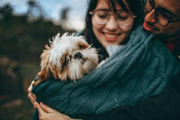 6 Alasan Orang yang Memelihara Hewan Layak Banget Dijadikan Pasangan