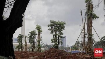 191 Pohon Tebangan Monas 'Raib', Anak Buah Anies Berkelit