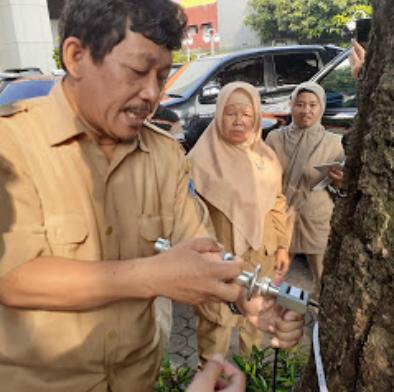 Uji Kesehatan Pohon? Emang perlu? Masuk aja dulu gan